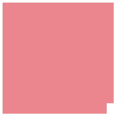 PT155-005