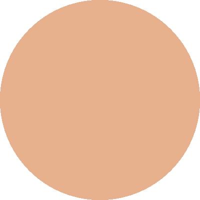 PT462-006