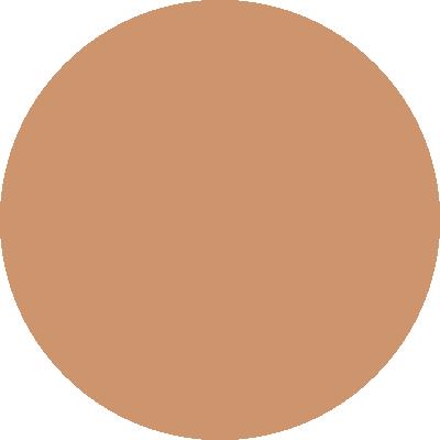 PT463-010